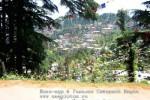 Йога-тур в Гималаи. Дхармасала-94-94