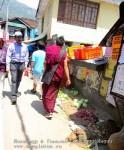 Йога-тур в Гималаи. Дхармасала-95