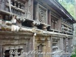 Йога-тур в Гималаи-19