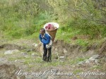 Йога-тур в Гималаи-37