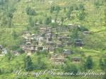 Йога-тур в Гималаи-39