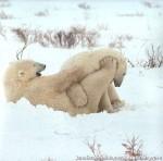 Хатха-Йога для начинающих. Белый Медведь-52