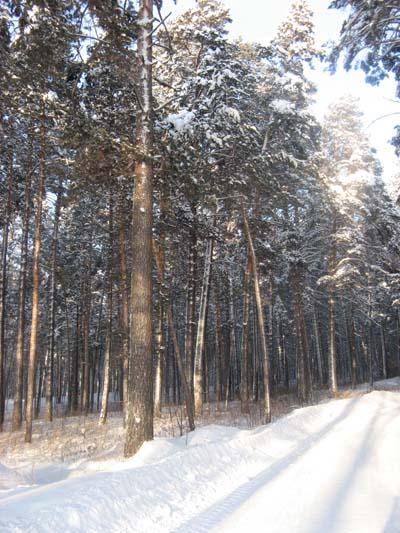 Фото Фото-отчёт ежегодной программы «Ледяной ожог», январь-2011