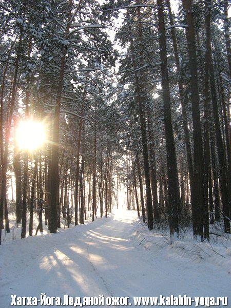 Фото Зимний Фестиваль «Ледяной ожог» 3-9 января, 2012 года