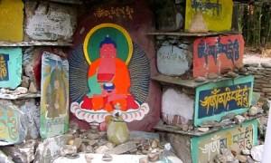 Танка. Йога-тур в Гималаи (Дхармасала)-1