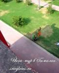 Йога-тур в Индию. Джантар Монтар- 27