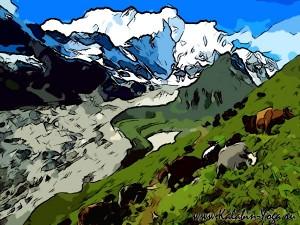 Йога-тур в Гималаи. Отдых в Индии-17