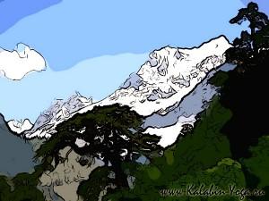 Йога-тур в Гималаи. Отдых в Индии-3