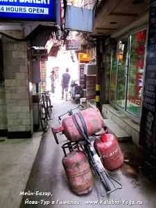 Йога-тур в Гималаи. Отдых в Индии-4