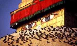 Йога-тур в Непал.Хатха-йога для начинающих-2