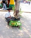 Йога-тур в Гималаи Северной Индии-5