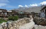 Йога-тур в Гималаи Северной Индии-9