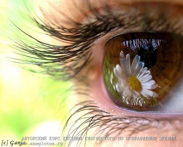 Фото Зрение. Бесплатный вебинар «Узел счастья»