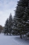 Фото-отчёт-2 с тренинга «Ледяной ожог» — 2014