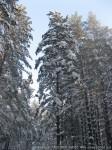 Закаливание,отдых на зимние каникулы