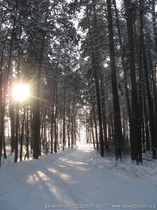 Фото «Снежные забавы»